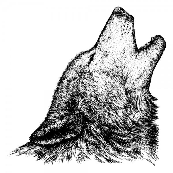 Feinkontur-Stempel, 15 x 15 cm, Wolf