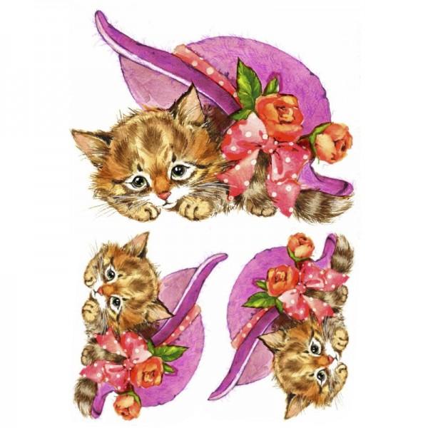 Color Bügeltransfers, DIN A4, Katze mit Hut