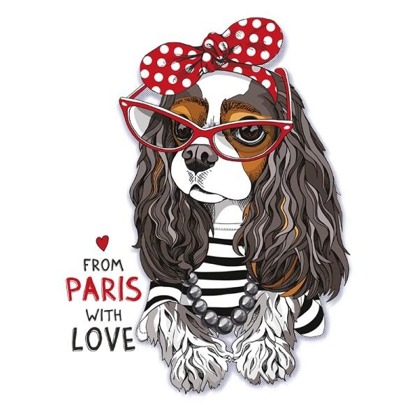 Color Bügeltransfers, DIN A4, Hundedame mit Brille