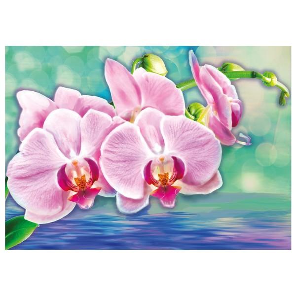 Diamond Painting, Orchideen, 35cm x 25cm, Motivleinwand, runde Steinchen, inkl. Werkzeug