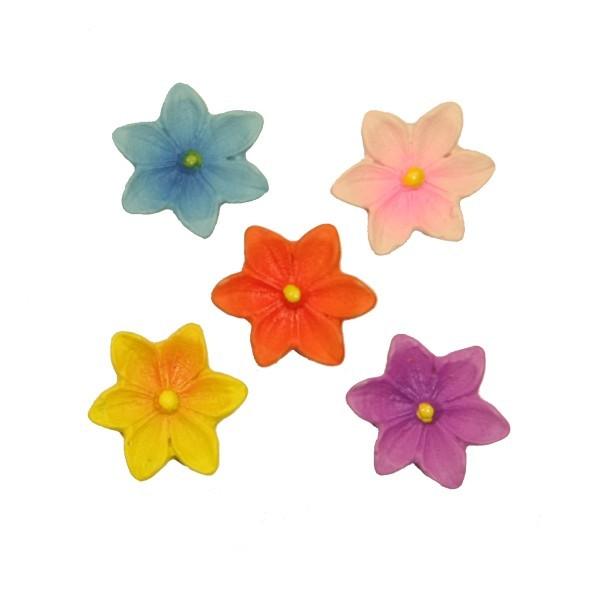 Relief-Blüten, Steinharz, bunt, Ø 2 cm, 10er Set