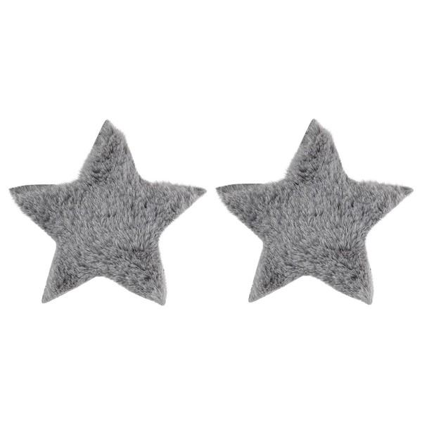 Fell-Sterne, Ø 11cm, grau, 2 Stück