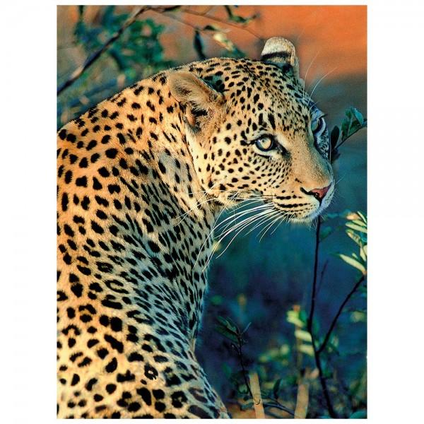 5D Diamond Painting, Leopard, 25cm x 35cm, Motivleinwand, runde Steinchen, inkl. Werkzeug