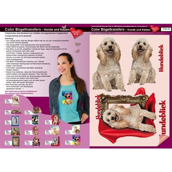 Color Bügeltransfers, DIN A4, Pudel, Hundeblick