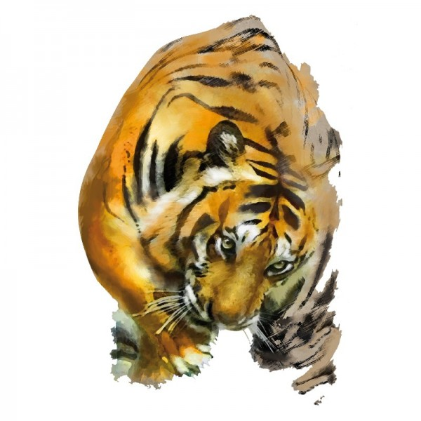 Color Bügeltransfers, DIN A4, Tiger 3