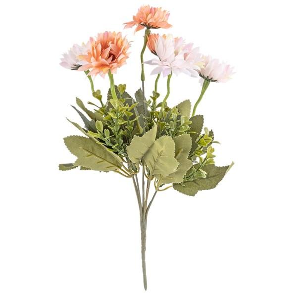 Blütenbusch, Chrysanthemen 2, 35cm hoch, 7 große Blüten, Ø 4,5cm, apricot