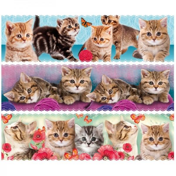"""Zauberfolien """"Katzen"""", Schrumpffolien für Ø8cm, 7,5 cm hoch, 6 Stück"""