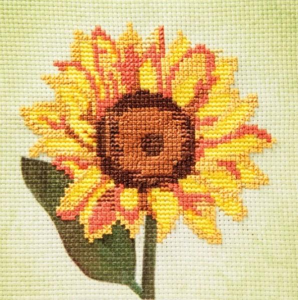 Stickbild-Set, malerischer Hintergrund,  14,5x14,5cm, Sonnenblume