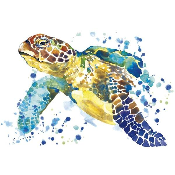 Color Bügeltransfer, DIN A4, Schildkröte