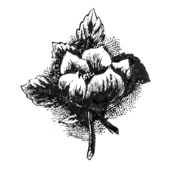 Stempel, Blumen-Motiv 1, 7cm x 6cm