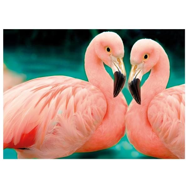 Diamond Painting, Flamingos, 25cm x 35cm, Motivleinwand, runde Steinchen, inkl. Werkzeug
