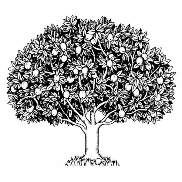 Feinkontur-Stempel, 15 x 15 cm, Baum