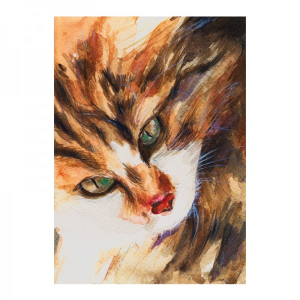 Color Bügeltransfers, DIN A4, Aquarell Katze