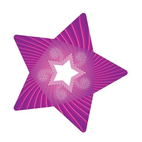 Stern-Stanzformen für 3-D Leuchtstern, 12 Stück, Design 5