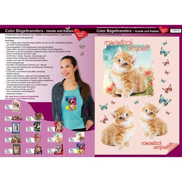 Color Bügeltransfers, DIN A4, Katze, Romantisch verspielt