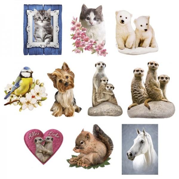 Relief-Bilder, Tiere, geprägt, 5,5-9 cm, 10er Set