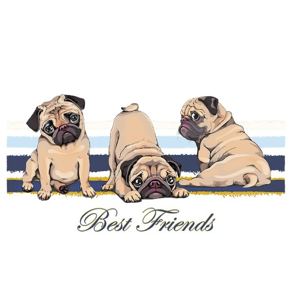 Color Bügeltransfers, DIN A4, Best Friends (Mops)